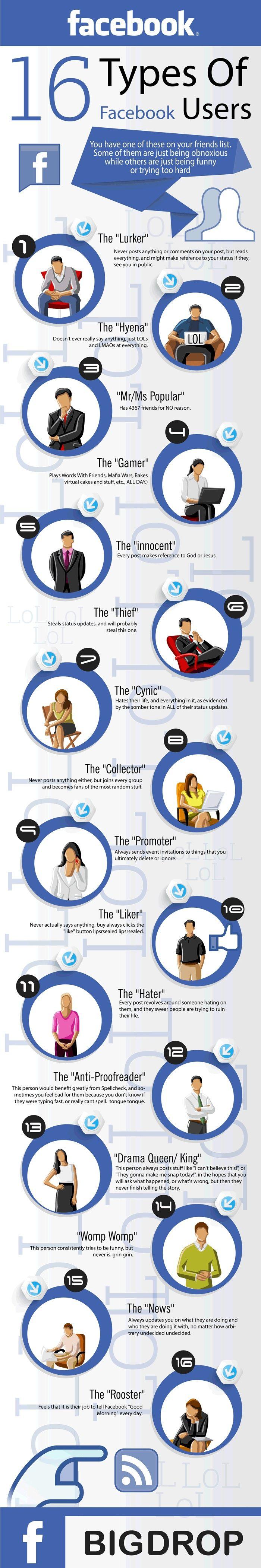 tipos usuarios de facebook
