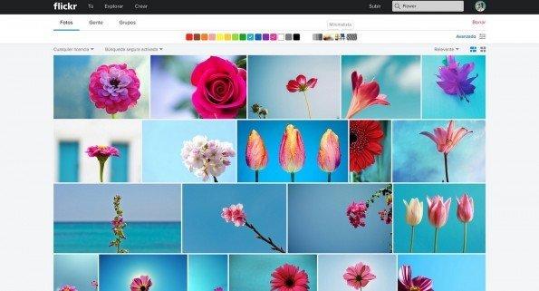 flickr_buscador