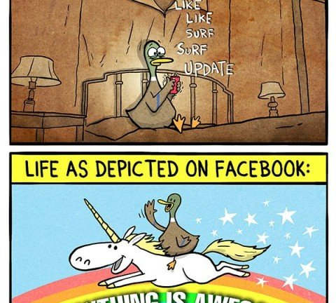 la vida segun facebook