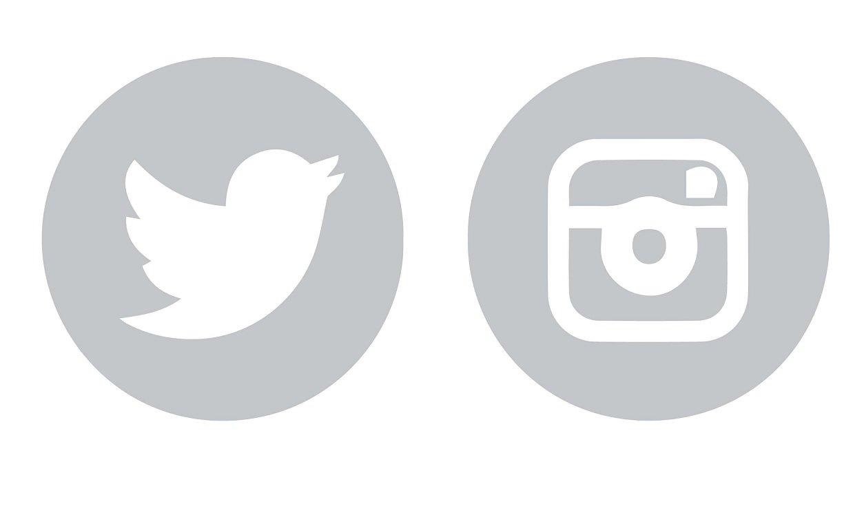 Resultado de imagen de icono twitter instagram