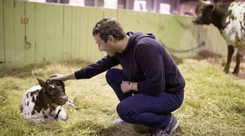 Zuckerberg cuenta con 12 community managers