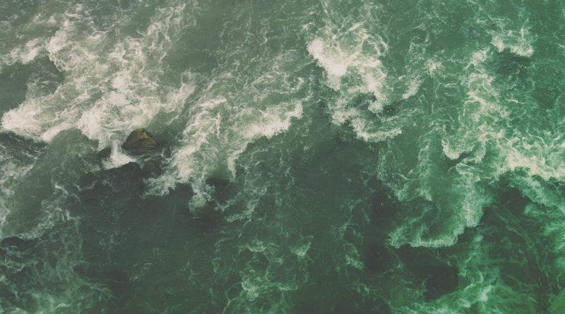 mareamarea