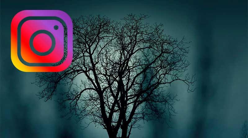Instagram Halloween