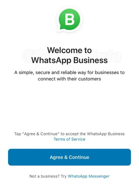 WhatsApp Business iOS