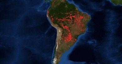 Dónde ver la evolución del incendio del Amazonas