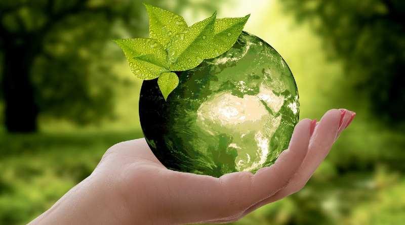 Bola del mundo verde