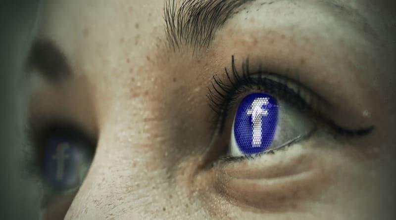 Facebook panel de búsqueda