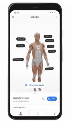 Realidad Aumentada cuerpo humano