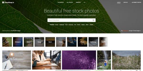 Stocksnap.io recursos gratuitos para internet