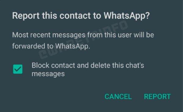Reportar WhatsApp chat invidual