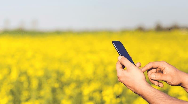 Campo con usuario de móvil