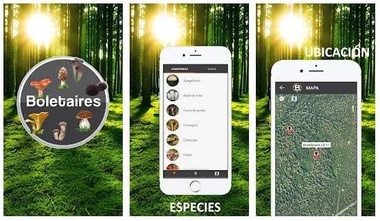 Apps de Android e iOS para coger setas