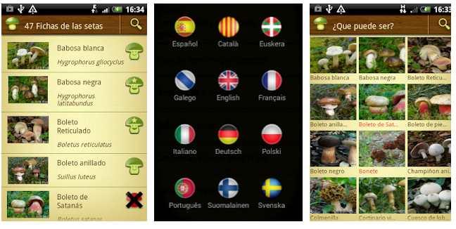 Apps para recoger setas