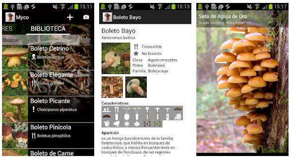 Apps para recoger setas, Myco