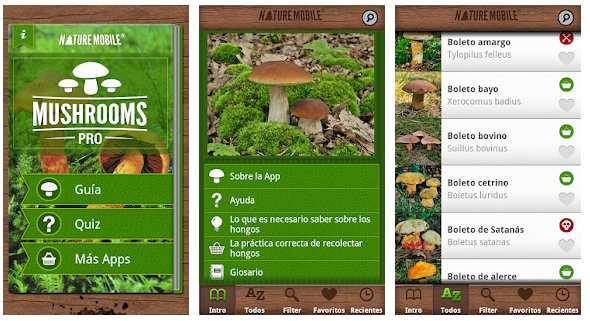 Setas Pro apps para coger setas